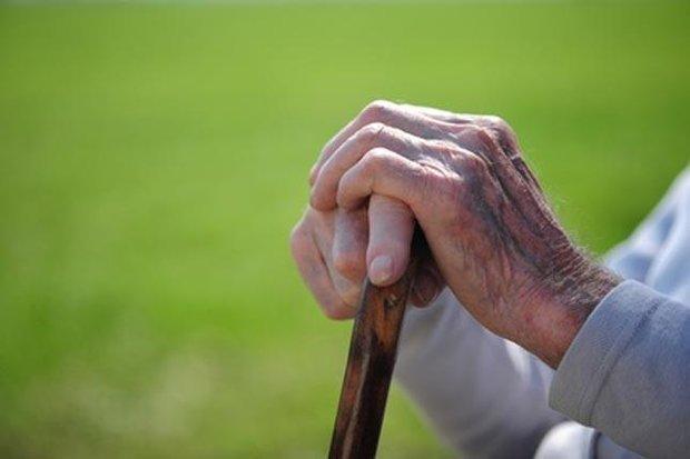 برگزاری هفته سالمند با شعار تحکیم حقوق سالمندان