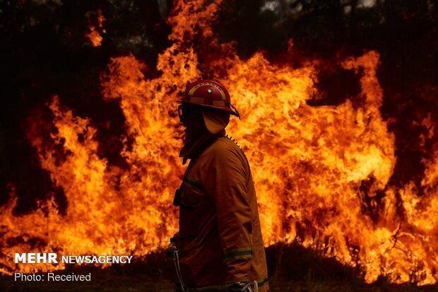 آتش سوزی سراسری استرالیا از کنترل خارج شد